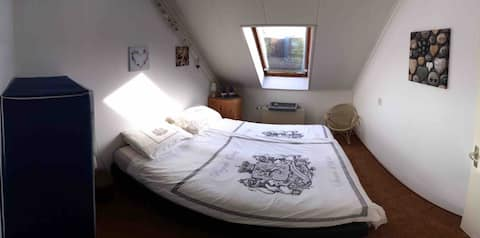 Clean and tidy private room in Shared house