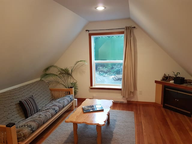Living room area with pull out futon