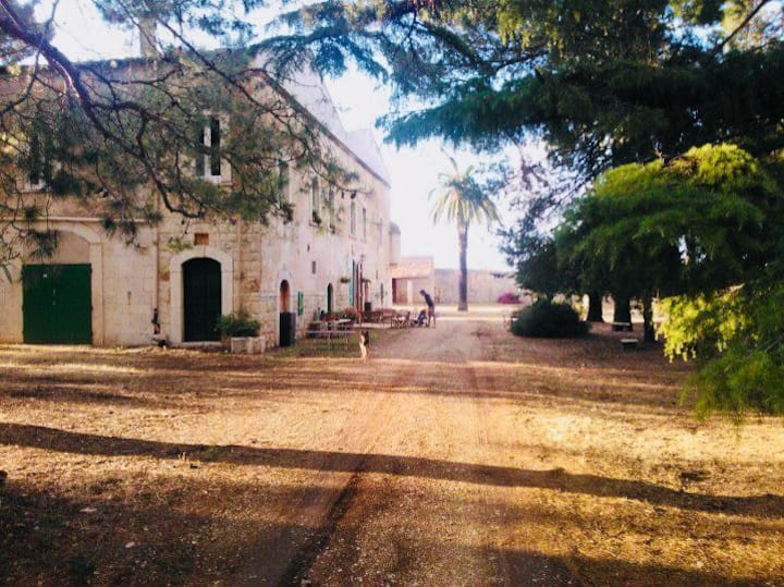 Tradizioni, cultura e mare nella campagna pugliese