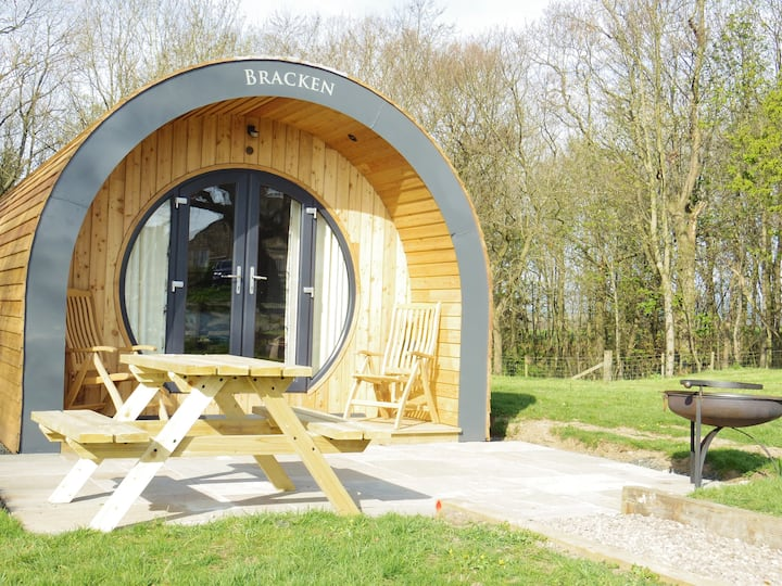 Bracken - a luxury pod in a woodland setting