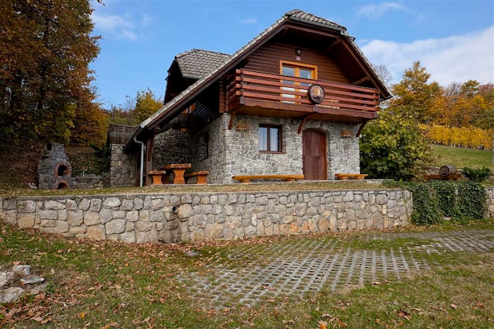 Vineyard cottage Rataj - Novo mesto - Casa