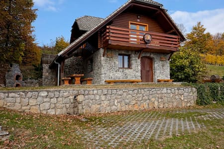 Vineyard cottage Rataj - Novo mesto - Talo