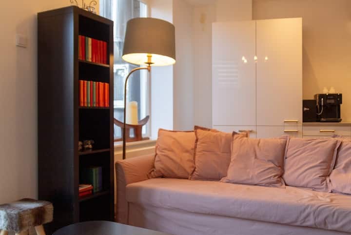GOG B Cozy Lofts Haarlem