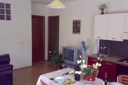 Appartamento con giardino - Apartment with garden - Sant'Eusanio del Sangro - Lejlighed