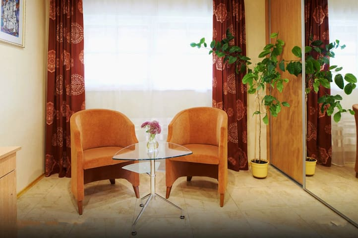 Private studio-apartments in Trakai - Trakai - Apartment