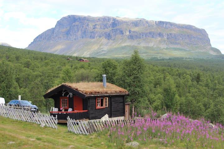 Urlaub auf der Alm, im Helin Gebirge