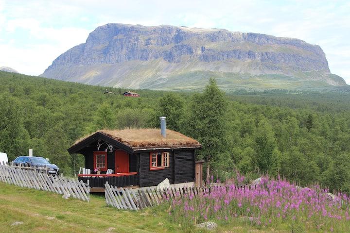 Mountain cabin Skoldungbu