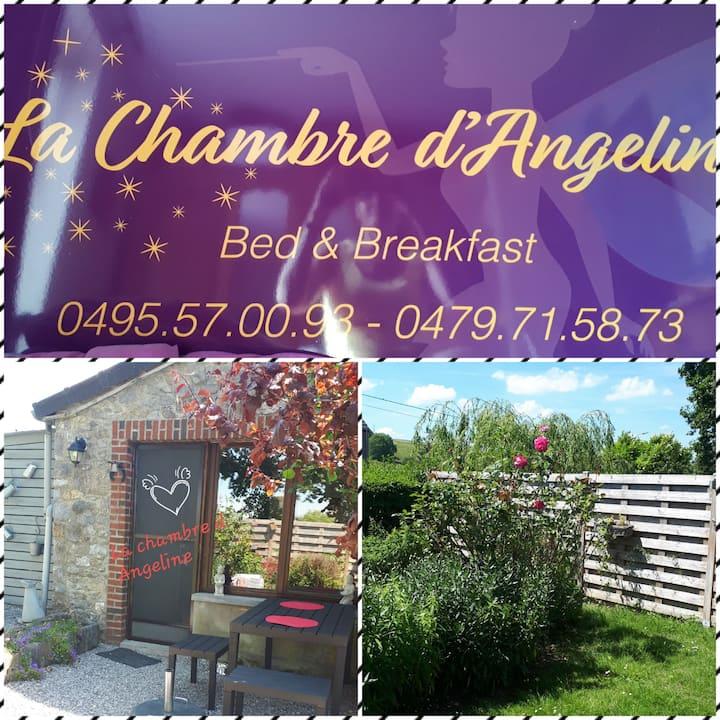 """""""La chambre d'Angeline"""" ( appartement de charme)"""