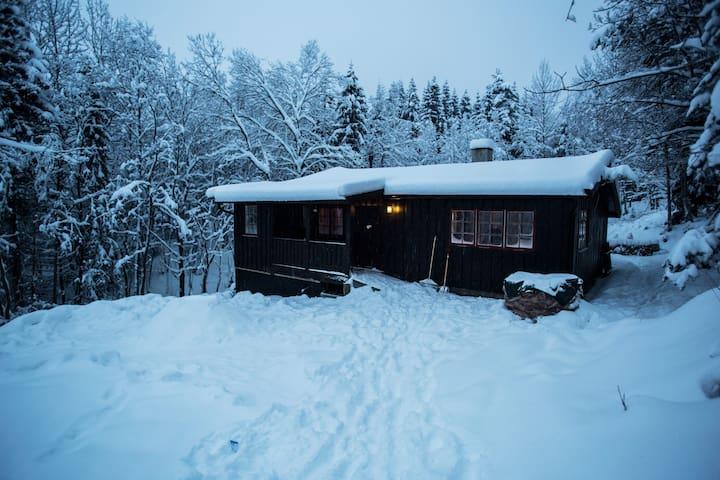 Hyttefred i nydelige Nordmarka (med alt)