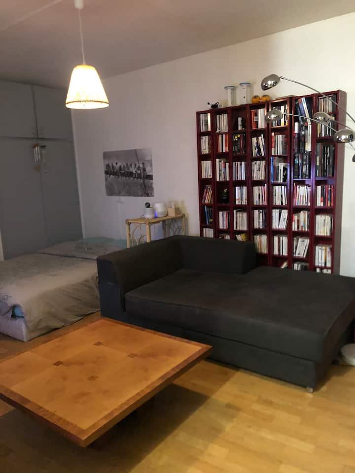 Studio moderne vue sur Seine accès métro 10 RER C.