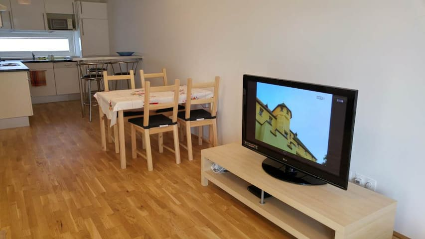 perfect Flat 66m² + big balcony - Vienna - Apartment