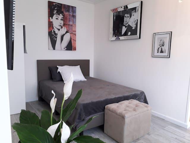 Luxurious accommodation for $ near Schiedam C.