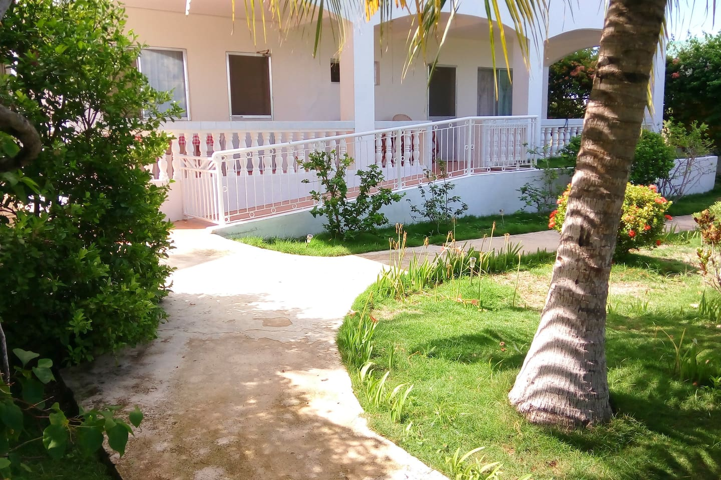 View from the private entrance towards the apartment. The ramp leading up to the terrace clearly visible. Calamansi (citrus fruit) tree just to the left. Coconut tree to the right. Cemented wide walk paths.