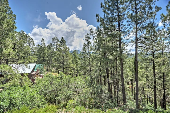 This home is ideally situated between Wolf Creek Ski Area & Pagosa Hot Springs!