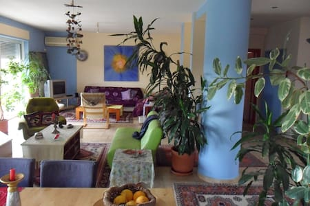 vila with swimming pool near the airport and metro - Pallini - Hus