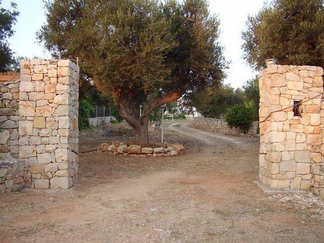 Villino Torre Suda 10 km da Gallipoli e 900m Jonio - Torre Suda - 別墅