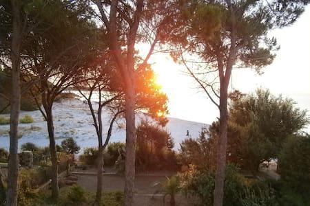Cala Liberotto: Villa Elena beachfront large villa - Cala Liberotto - Villa