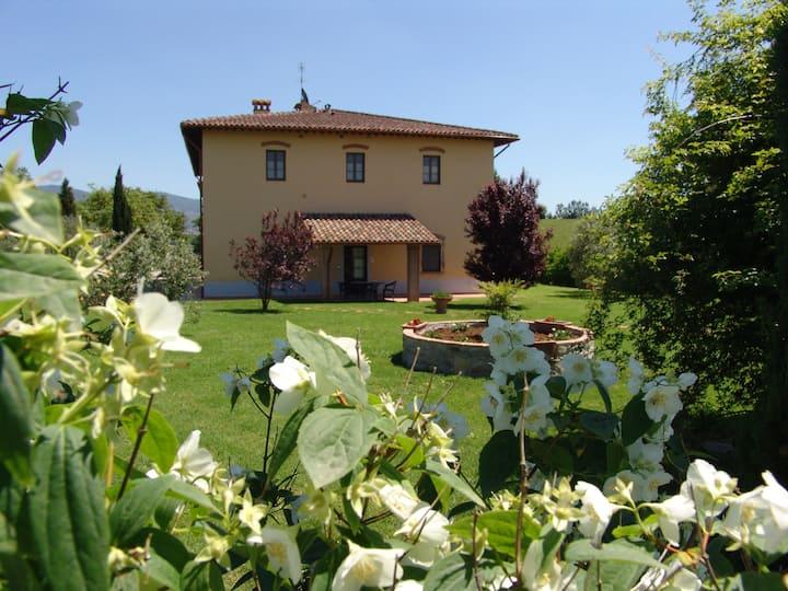 Agriturismo Tenuta Buccialla - Vinci (FI)
