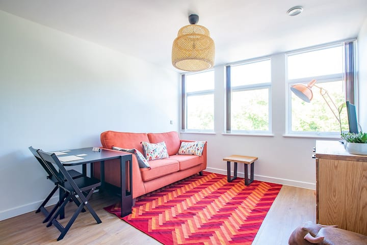 Modern 1 Bed Apartment in City Centre - 309