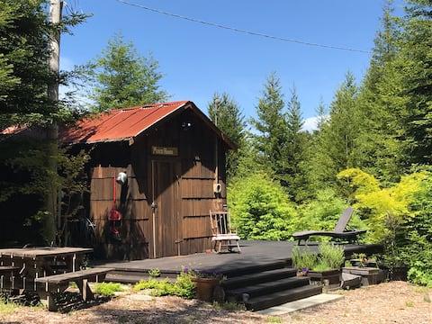 Очаровательная 150-летняя домик в красном лесу