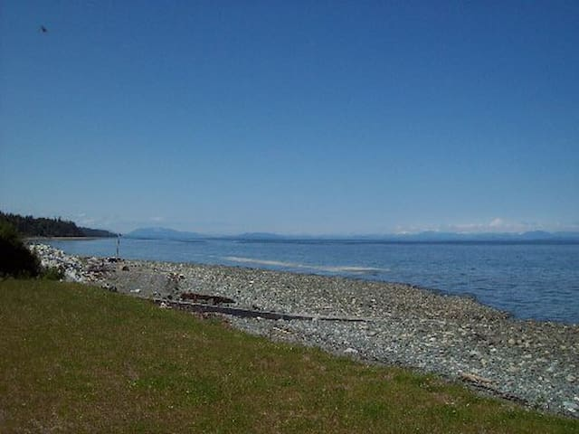 1 Bdrm condo right on Bates beach - Courtenay - Kondominium