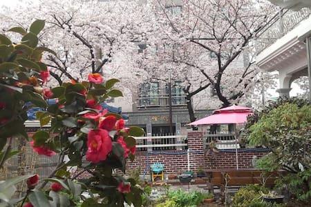 진해 벚꽃 아틀리에 가든하우스 1층 독채 - Jinhae - House