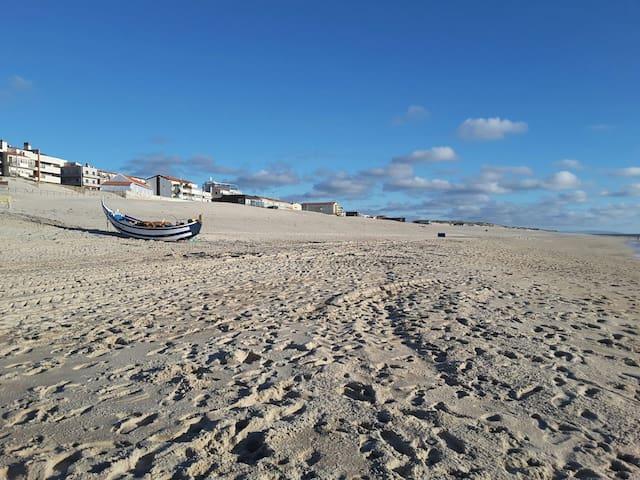 Beau 4 pièces tout confort - Praia de Mira - House