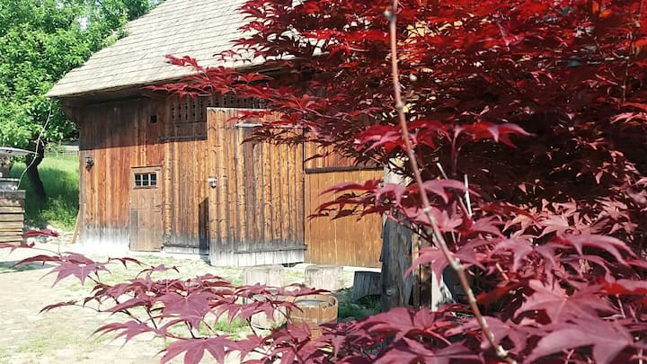 Pintea Cottage & Barn Accommodation  - Bucovina