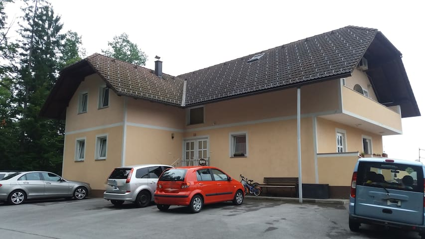 apartment in country, also near Ljubljana(20min) - Velika Ligojna - Pis
