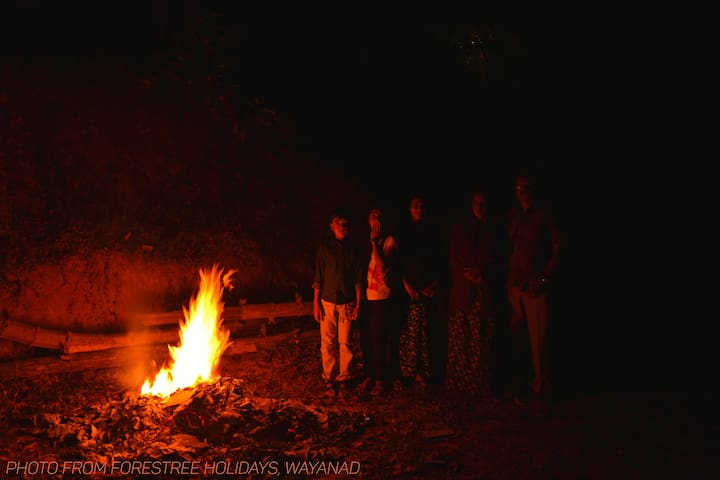 Night camp fire - it's my family the pic