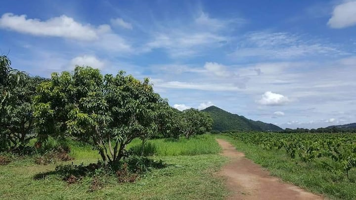 Farmstay in Pak Chong