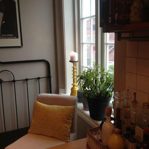 Stor moderne leilighet i idylliske omgivelser - Horten - Apartemen