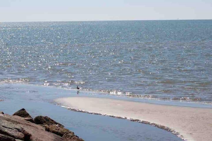At The Beach- Beautiful  Ocean View Condo #9204