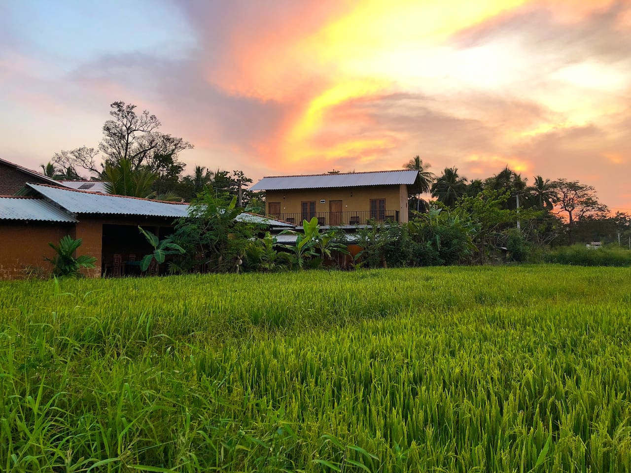 Perched on the edge of the rice paddies, our guesthouse is a perfect place to relax