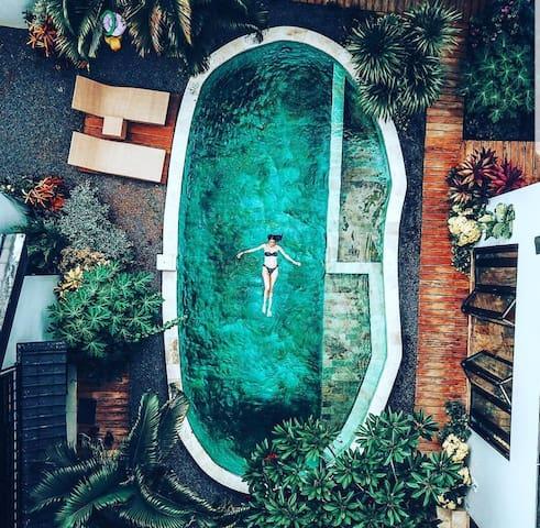 Oaza Bali Bungalows II - LOVINA -