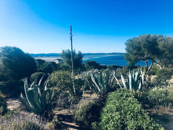 Sublime vue mer dans parc 3ha -Mer à pied- Hyères