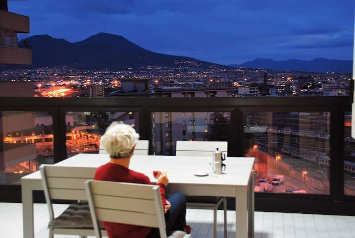 Teresinella (apartment with Vesuvio view)