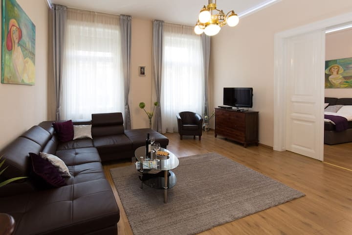 Elegant apartment with Buda Castle view