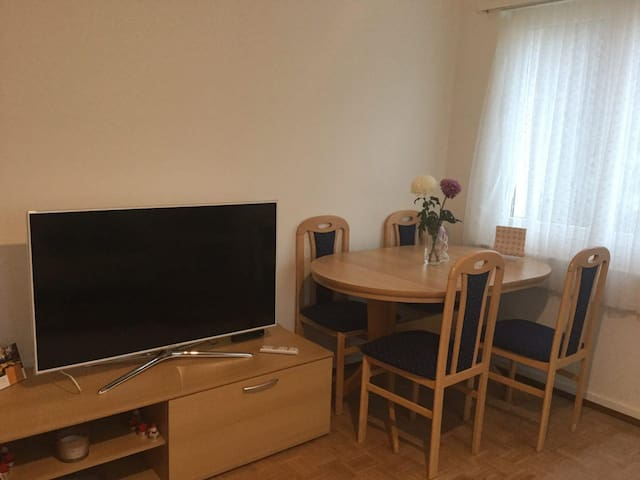 Bright, furnished, two room apartment, well access - Zürich - Apartment