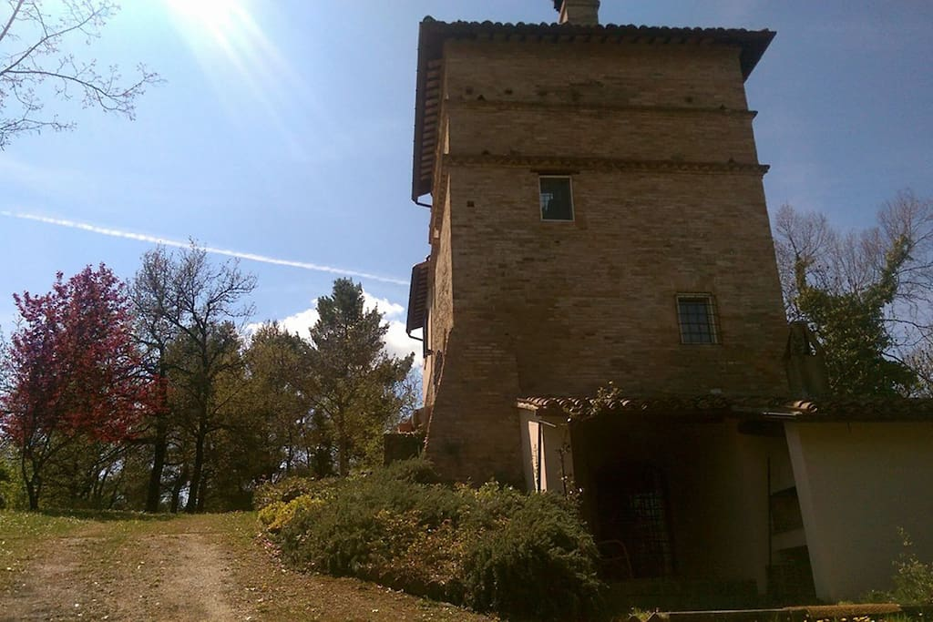 Vista della torre