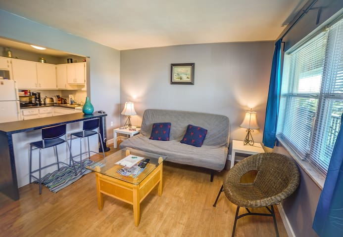 One Bedroom Condo in Clearwater Near Old Tampa Bay