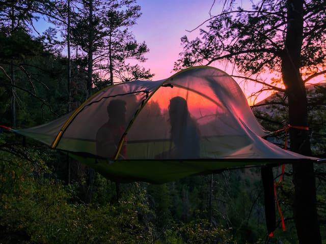 Tentsile hammock tent - North Logan - Stan