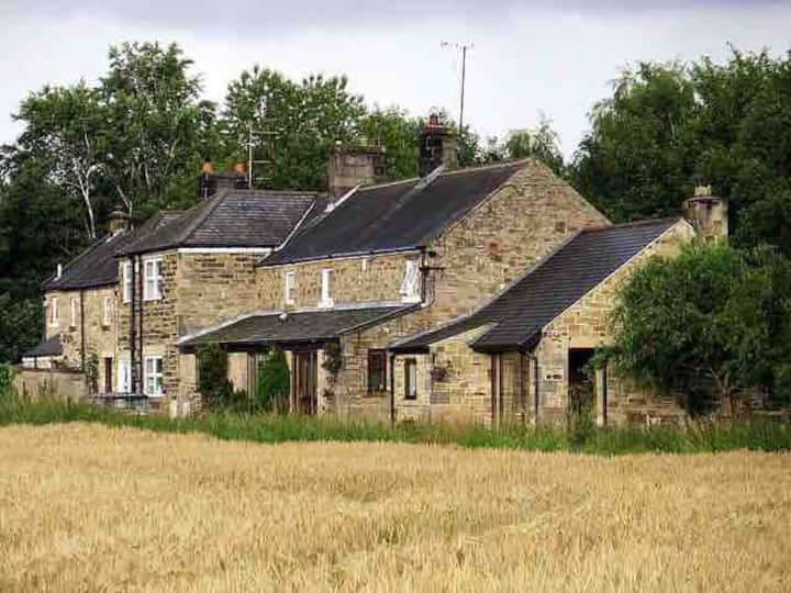 Rose Cottage / 2 Street Houses, Wylam