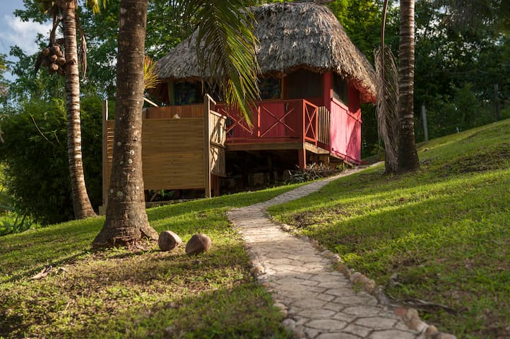 Nina's Place - Cozy (see: Mayan, Modern, Bungalow) - Blackman Eddy - Bed & Breakfast