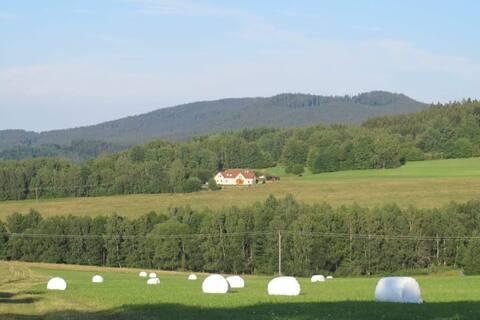 Novohradky - oáza klidu na samotě u lesa
