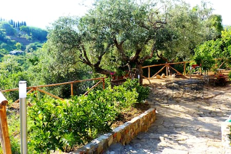 Country House  in Cilento National Park - Huvila