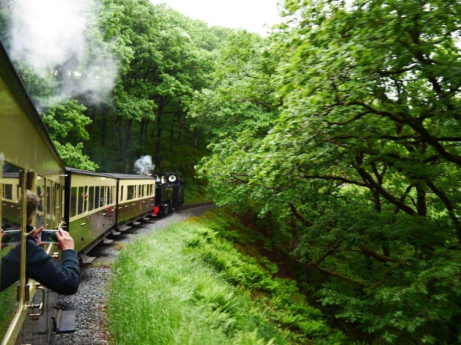 THE  STEAM TRAIN (ALIGHT AT ABERFFRWD)