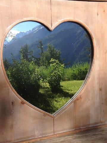 Romantic in the Woods