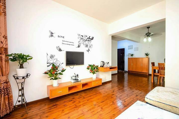 临江汉路商业街/双地铁/大智路地铁站大智嘉园阳光温馨两房 - Wuhan - Apartemen
