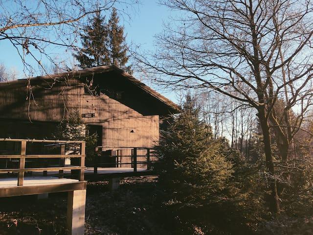 Stijlvolle vakantiewoning - La Roche-en-Ardenne - Alpehytte